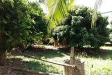 For Sale Land 393 sqwa in Mueang Chiang Mai, Chiang Mai, Thailand