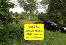For Sale Land 155 sqwa in Mueang Trat, Trat, Thailand