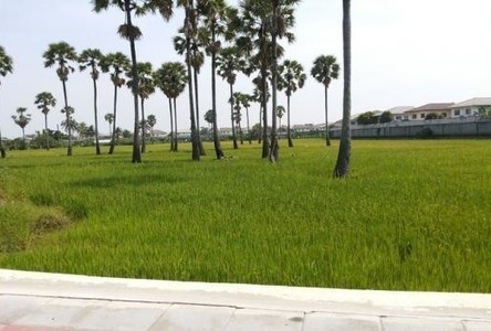 For Sale Land 15 rai in Pak Kret, Nonthaburi, Thailand