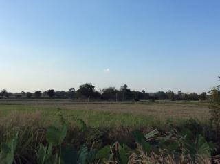 For Sale Land 20 rai in Nong Mamong, Chainat, Thailand | Ref. TH-STWQRMYH