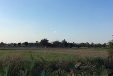 For Sale Land 20 rai in Nong Mamong, Chainat, Thailand