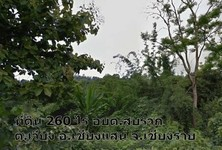 For Sale Land 260 rai in Chiang Saen, Chiang Rai, Thailand