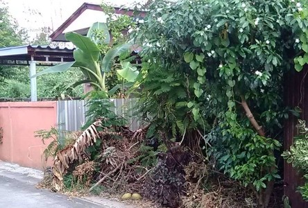 For Sale Land 30 sqwa in Sai Mai, Bangkok, Thailand