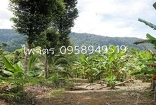For Sale Land 38 rai in Khao Khitchakut, Chanthaburi, Thailand