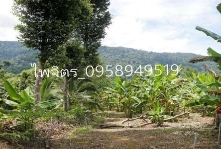 ขาย ที่ดิน 38 ไร่ เขาคิชฌกูฏ จันทบุรี