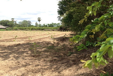 For Sale Land 3 rai in Tha Yang, Phetchaburi, Thailand