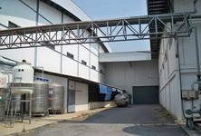 For Rent Warehouse 182 sqwa in Wang Muang, Saraburi, Thailand