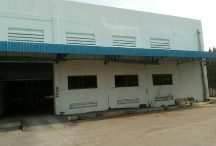 Продажа: Склад 1,250 кв.м. в районе Phan Thong, Chonburi, Таиланд