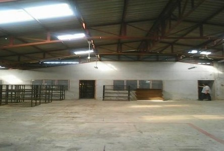 For Rent Warehouse 3 rai in Hang Dong, Chiang Mai, Thailand