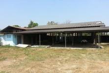 Продажа: Склад 1 рай в районе Fang, Chiang Mai, Таиланд