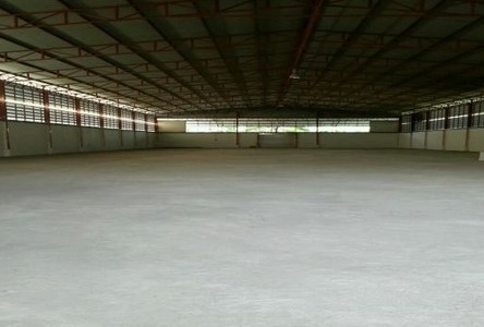 For Rent Warehouse 2 rai in Sam Khok, Pathum Thani, Thailand