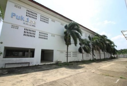For Sale Warehouse 2 rai in Sam Phran, Nakhon Pathom, Thailand