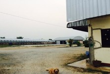 For Sale Warehouse 11 rai in Mae Lao, Chiang Rai, Thailand