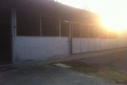 For Rent Warehouse 38 sqm in Ban Pong, Ratchaburi, Thailand
