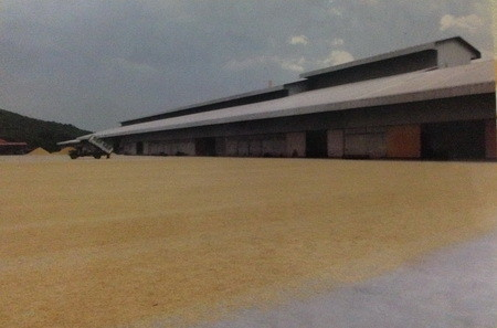 For Sale Warehouse 82 rai in Tha Tako, Nakhon Sawan, Thailand | Ref. TH-BRECIBZL
