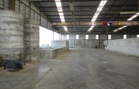 For Sale Warehouse 5 rai in Mueang Chachoengsao, Chachoengsao, Thailand | Ref. TH-WLYQPEKB
