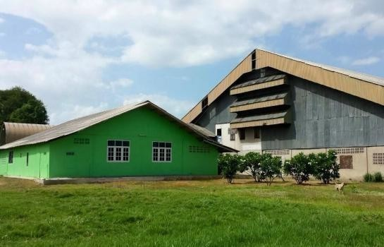 For Sale or Rent Warehouse 950 sqwa in Hankha, Chainat, Thailand | Ref. TH-IOOAZLPT