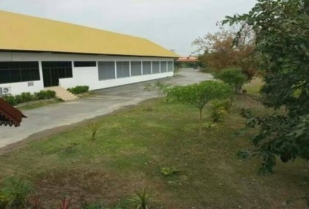 For Sale or Rent Warehouse 6 rai in Hang Dong, Chiang Mai, Thailand