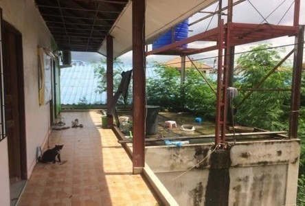 For Sale 11 Beds Shophouse in Bang Lamung, Chonburi, Thailand