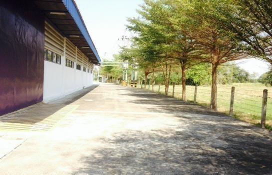 For Sale Warehouse 6 rai in Nong Khae, Saraburi, Thailand   Ref. TH-DGQLHQMZ