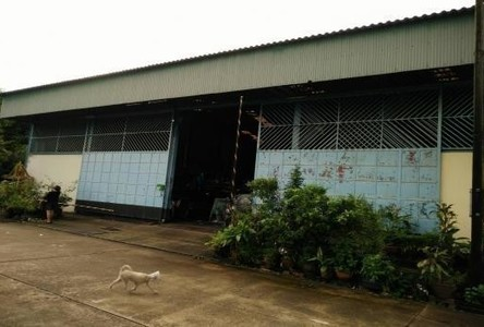 For Sale Warehouse 140 sqwa in Songkhla, South, Thailand