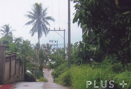 For Sale Land 0-2-169 rai in Phuket, South, Thailand