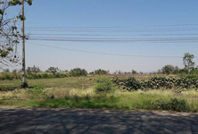 For Sale Land 14 rai in Khok Samrong, Lopburi, Thailand