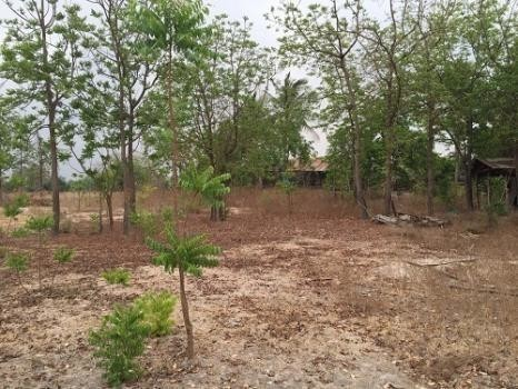 For Sale Land 42 rai in Don Chedi, Suphan Buri, Thailand   Ref. TH-VVINQKER