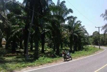 Продажа: Земельный участок 2 рай в районе Lang Suan, Chumphon, Таиланд