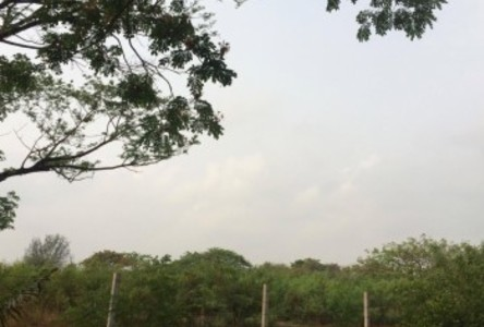For Rent Land 738 sqwa in Mueang Nonthaburi, Nonthaburi, Thailand