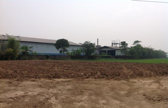 For Sale Land 41 rai in Mae Sai, Chiang Rai, Thailand | Ref. TH-SPNVTBSK
