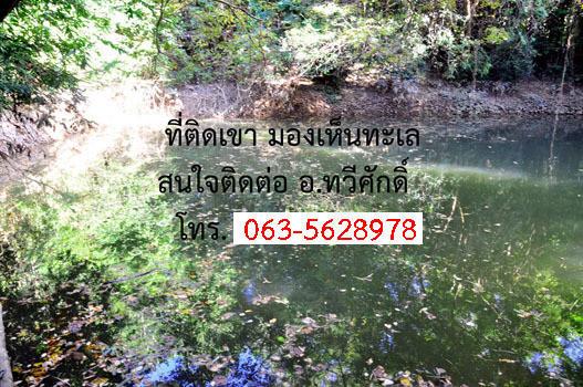 ขาย ที่ดิน 22 ไร่ ท่าใหม่ จันทบุรี | Ref. TH-ROXVPBBA
