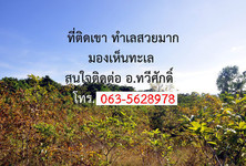 For Sale Land 22 rai in Tha Mai, Chanthaburi, Thailand