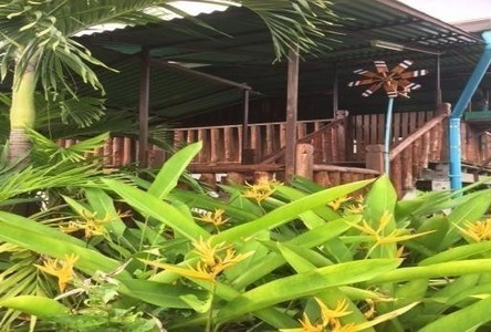 For Sale 2 Beds House in Sikhio, Nakhon Ratchasima, Thailand