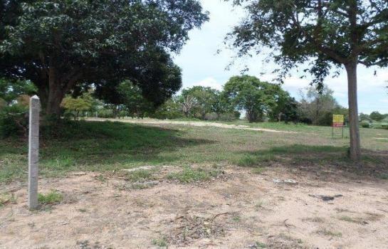 ขาย ที่ดิน 2 ไร่ บางละมุง ชลบุรี | Ref. TH-LHNMGLNC