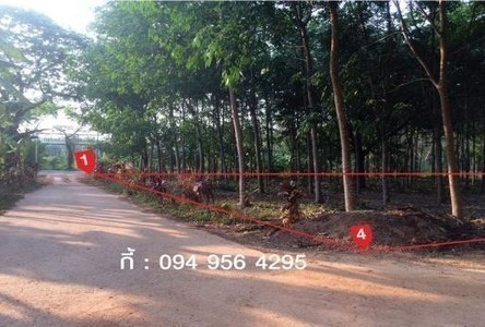 For Sale Land 2 sqwa in Khao Saming, Trat, Thailand