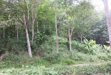 For Sale Land 33 rai in Ban Khai, Rayong, Thailand