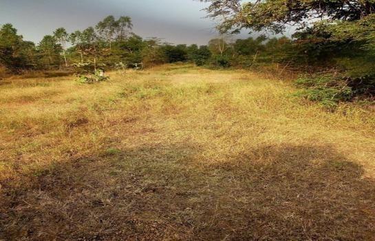ขาย ที่ดิน 280 ตร.ว. เมืองนครราชสีมา นครราชสีมา | Ref. TH-JKXRZQEV