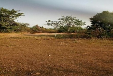 For Sale Land 280 sqwa in Mueang Nakhon Ratchasima, Nakhon Ratchasima, Thailand