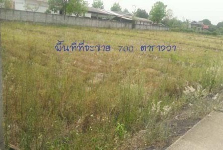 For Sale Land 700 sqwa in San Pa Tong, Chiang Mai, Thailand