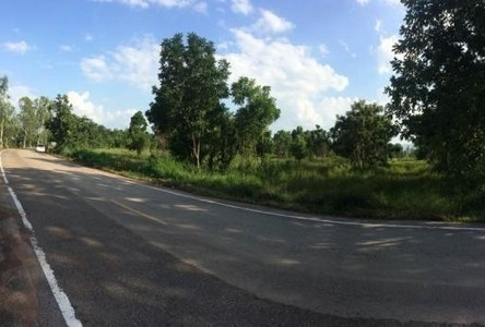 For Sale Land 21 rai in Lom Sak, Phetchabun, Thailand