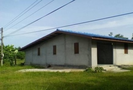 For Sale Land 479 sqwa in Don Sak, Surat Thani, Thailand