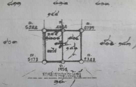 ขาย ที่ดิน 50 ตร.ว. คลองหลวง ปทุมธานี | Ref. TH-SVUCSUXN