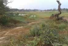 For Sale Land 16 rai in Phimai, Nakhon Ratchasima, Thailand
