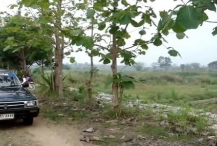 For Sale Land 4.35 rai in Mae Lao, Chiang Rai, Thailand