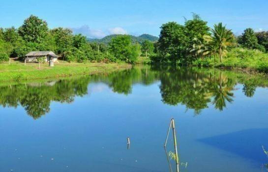 For Sale Land 50 rai in Mae Taeng, Chiang Mai, Thailand | Ref. TH-GIYPGOSV
