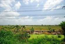 For Sale Land 39 rai in Lat Lum Kaeo, Pathum Thani, Thailand