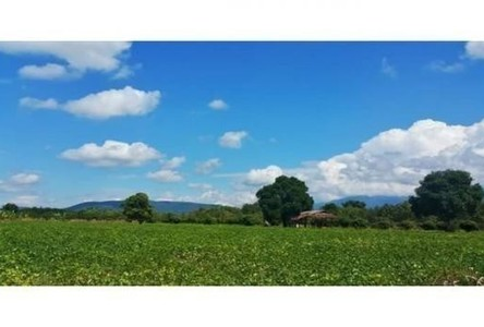 For Sale Land 34 rai in Mueang Songkhla, Songkhla, Thailand