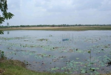 For Sale Land 8 rai in Mueang Amnat Charoen, Amnat Charoen, Thailand