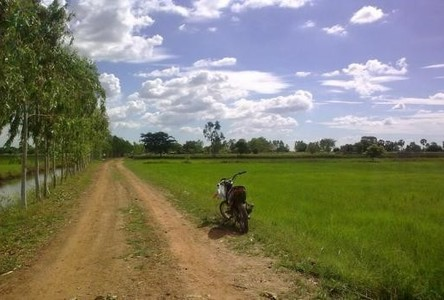 For Sale Land 40 rai in Phimai, Nakhon Ratchasima, Thailand